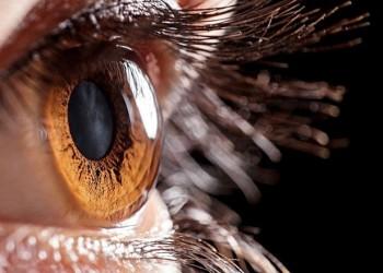 Kornea - Retina Tedavisi